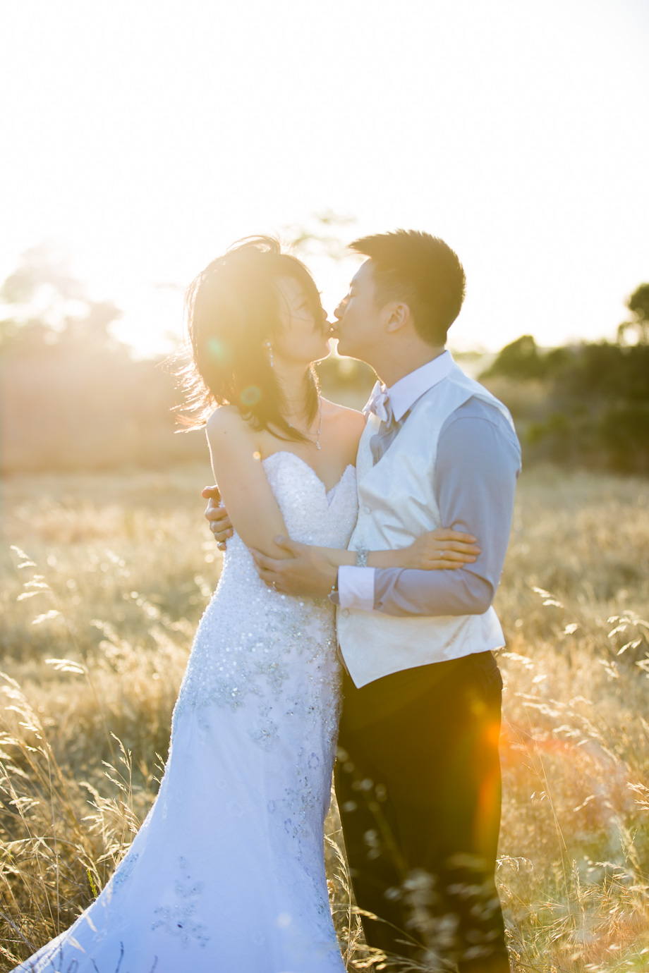 soft romantic portrait of the couple kissing in a grassy field with warm sun flare shining on them