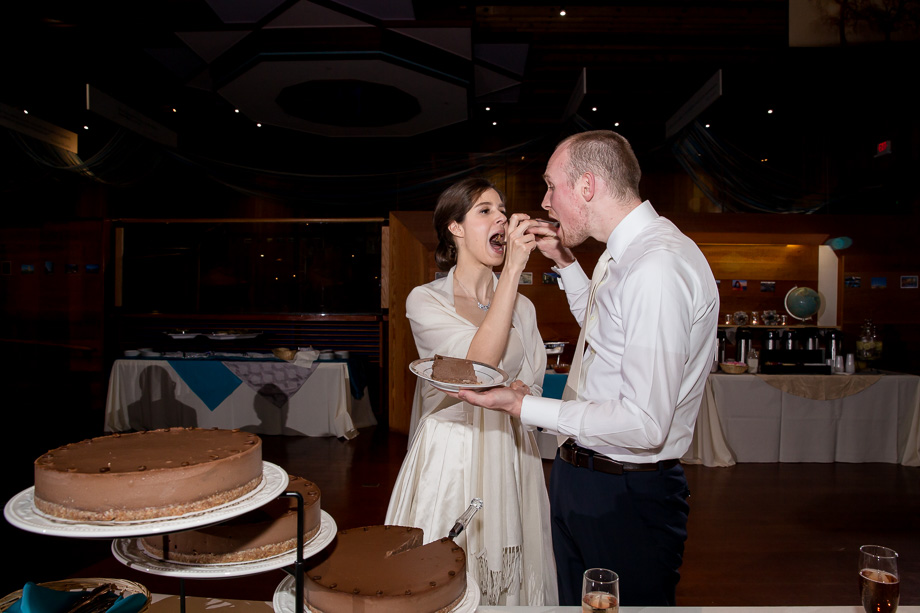bride and groom feeding each other the wedding chocolate cheesecake