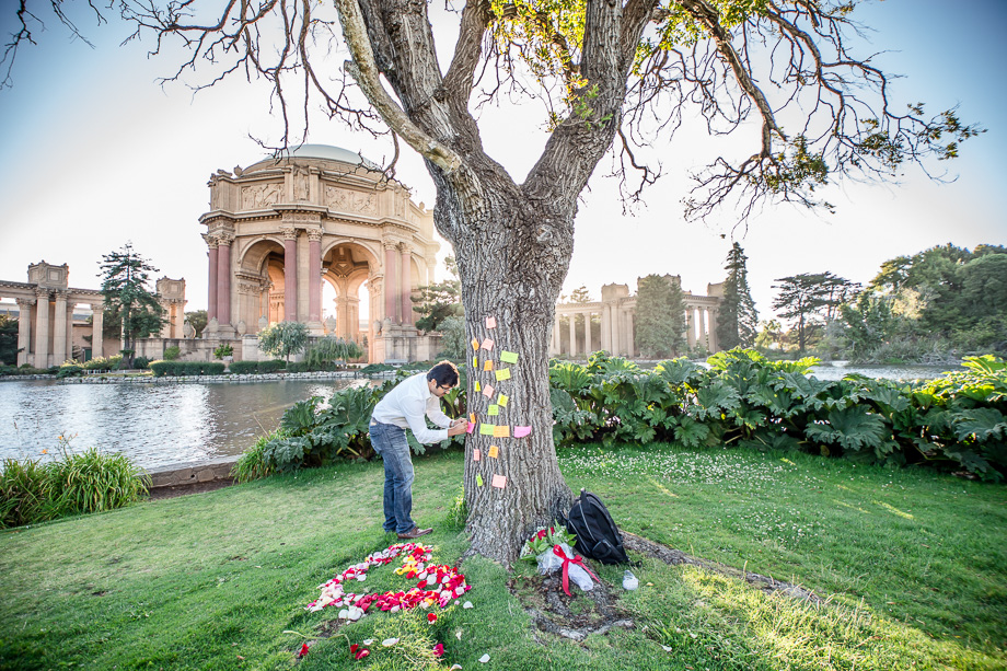 groom-to-be seting up the surprise proposal scene at Palace of Fine Arts