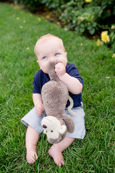 10 month old baby chewing on his favorite monkey toy