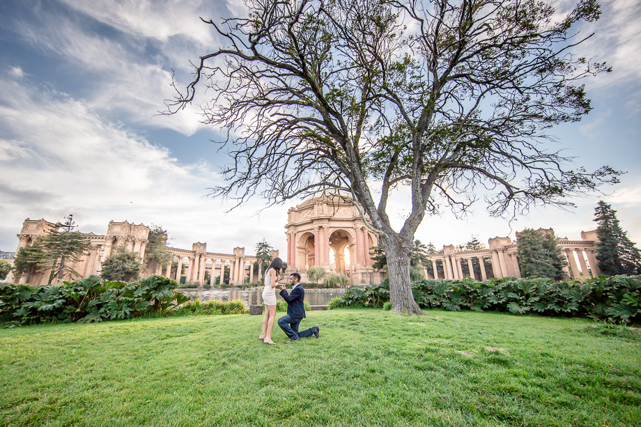 san francisco proposal photographer wide angle palace of fine arts
