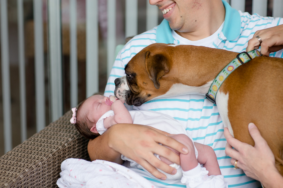 puppy giving kisses to the newborn baby girl
