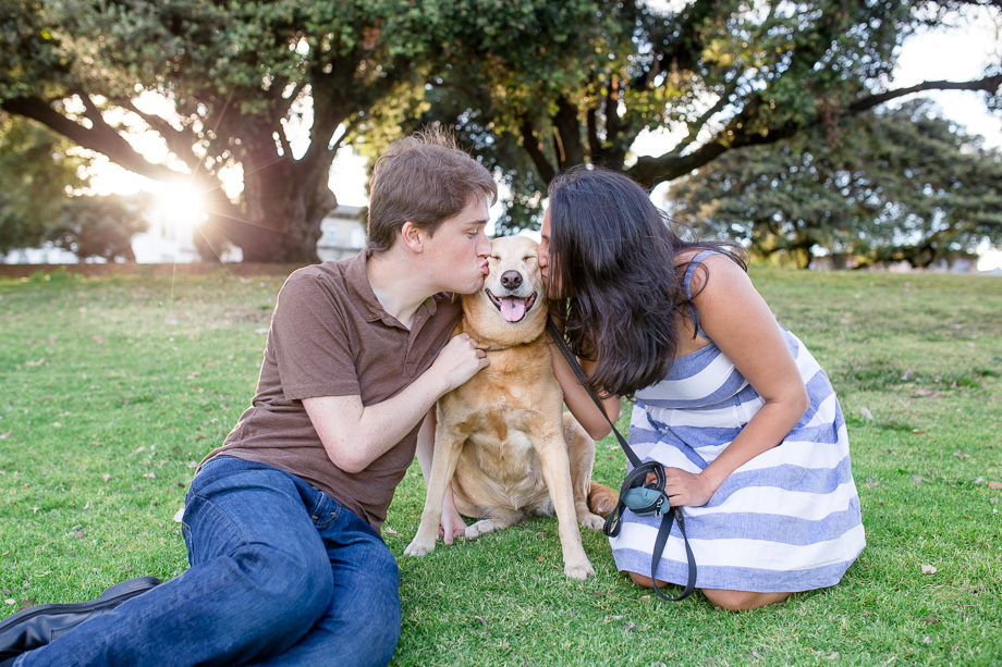 puppy making a cute silly face - oakland engagement and wedding photographer