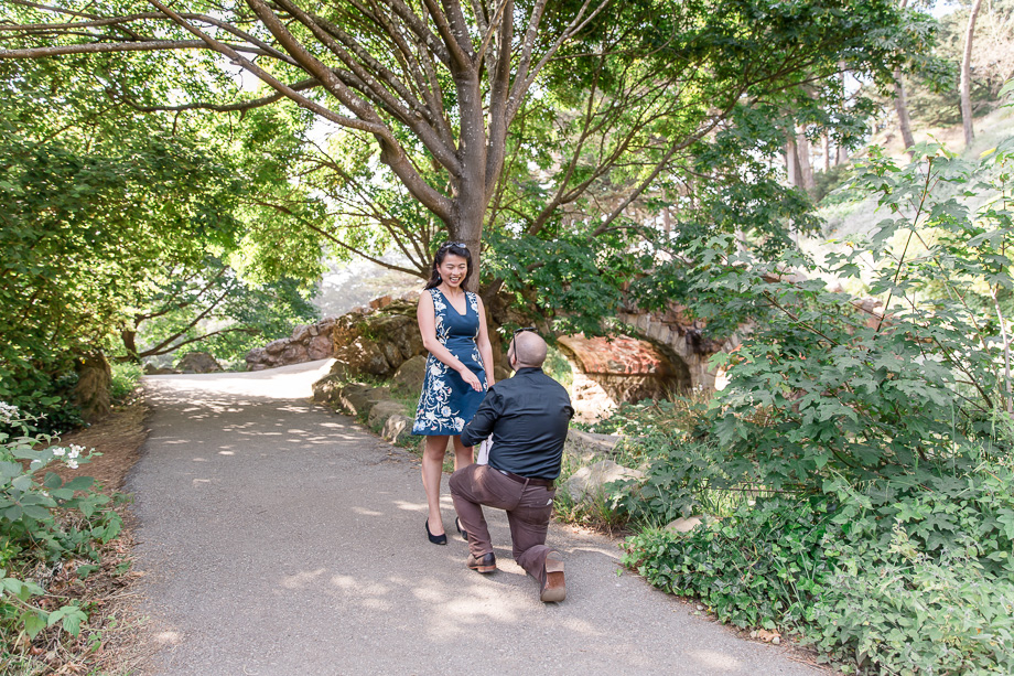 surprise proposal at the Stow Lake stone bridge