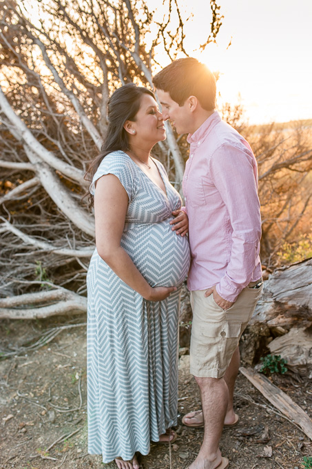 beautiful maternity picture with husband