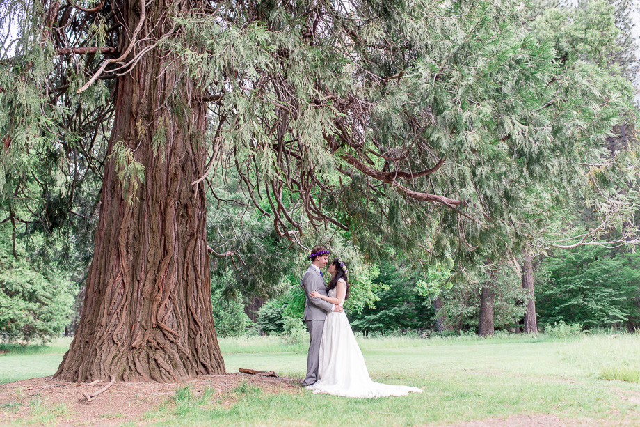 bride and groom portrait under a magical big tree