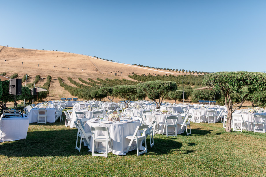 wedding reception with a mountain and vinyards backdrop - purple orchid inn