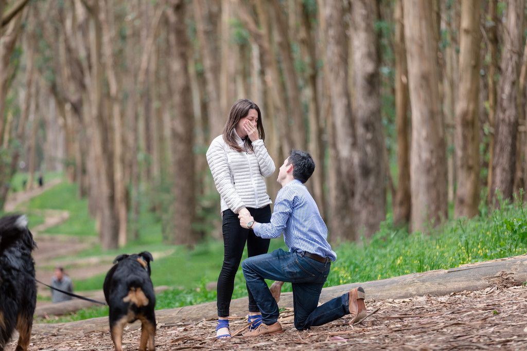 got engaged in the woods