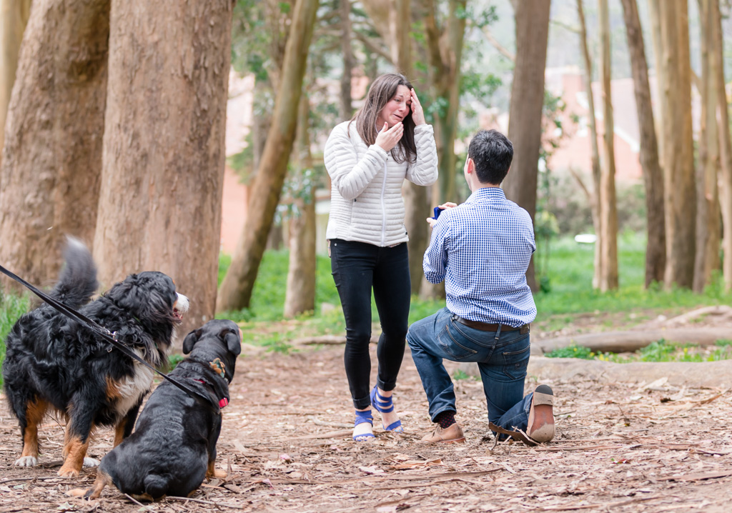 san francisco surprise engagement idea - having your dogs as the witness is the best
