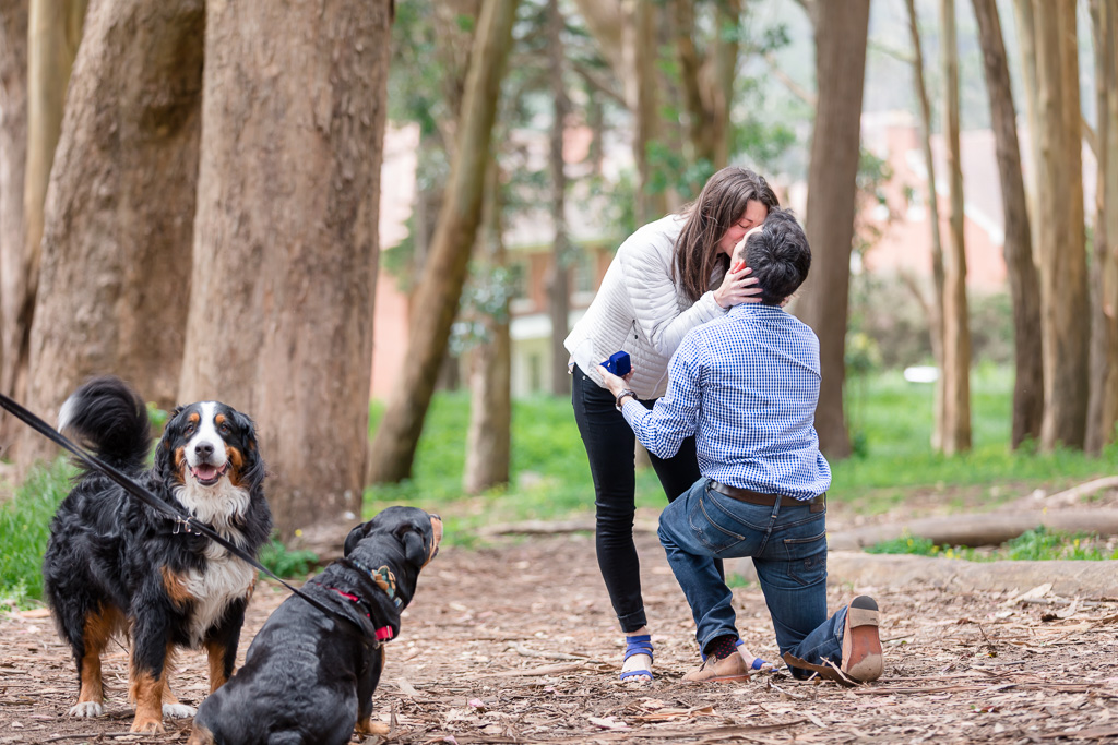 lovers lane presidio wood line surprise engagement proposal