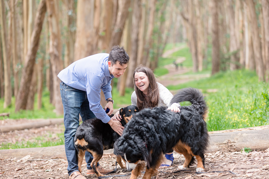 the sweetest surprise in the world - having beloved dogs witness your proposal