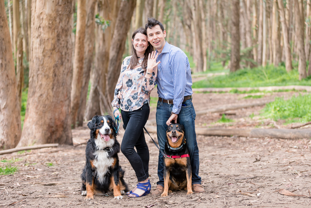 post surprise proposal portrait with dogs