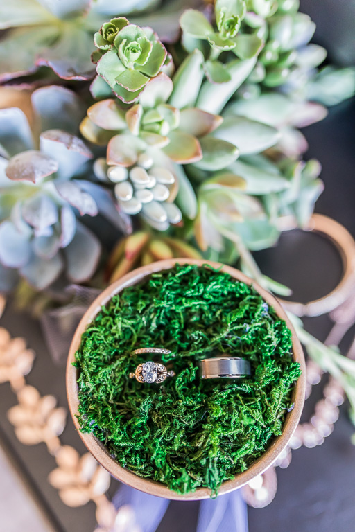 photo of wedding rings in flower pot