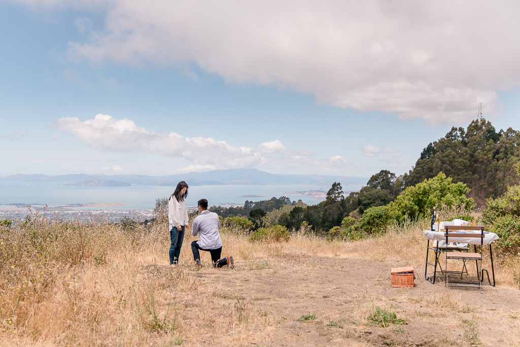 proposal after picnic in vista point