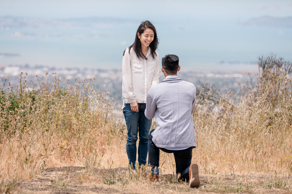 happy reaction to marriage proposal in golden field of grass