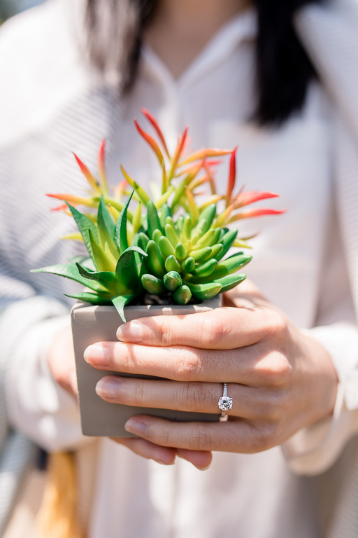 holding cute green succulent potted plant and showing off diamond ring