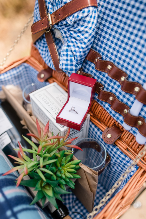 cute picnic basket with succulent and ring box