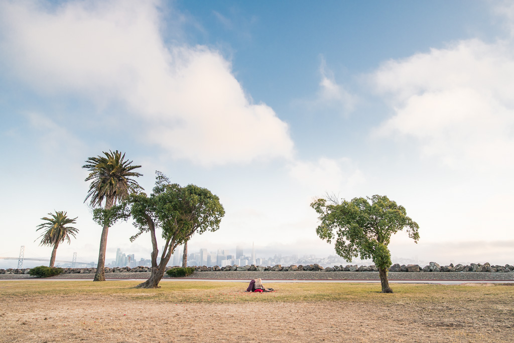 san francisco city skyline panorama view from treasure island where this surprise proposal happened