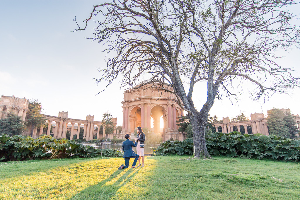 romantic sunset surprise proposal at palace of fine arts