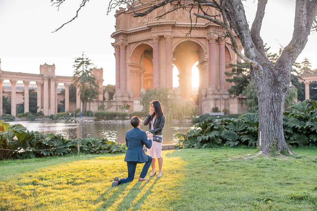 marriage proposal at palace of fine arts