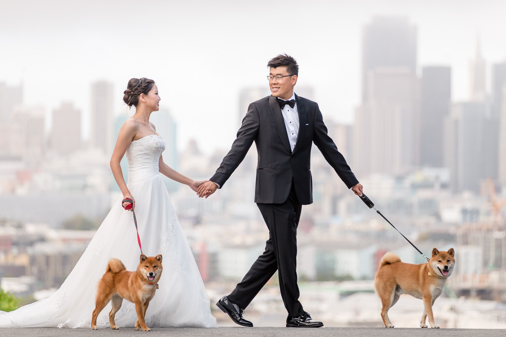 Potrero Hill wedding photo with beloved dogs