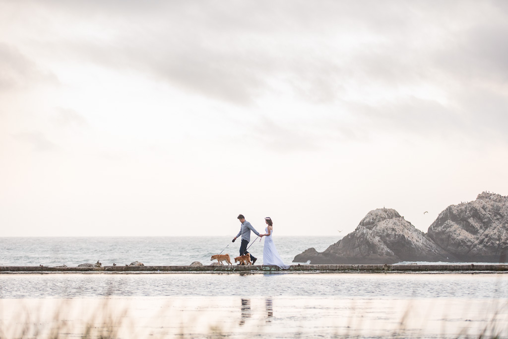 sutro baths engagement photo with dogs