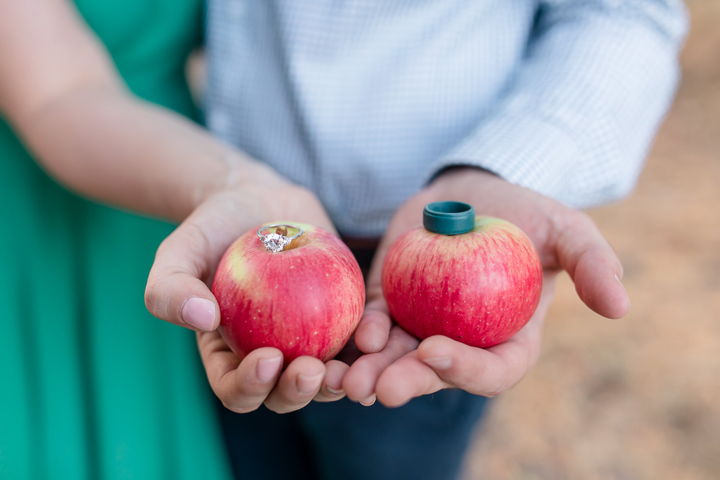 engagement rings on apples from their own backyard