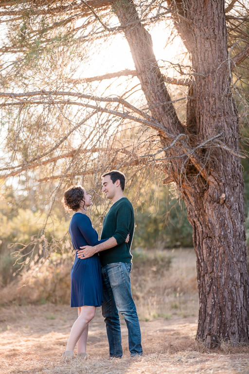 Sonoma county private backyard engagement picture