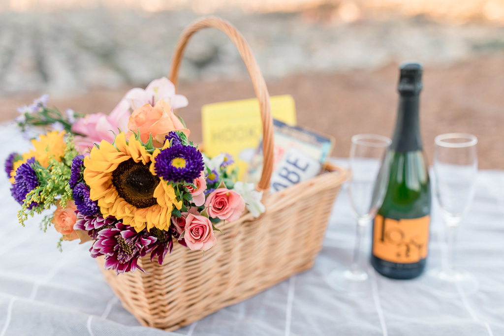 cute picnic basket with books and champagne