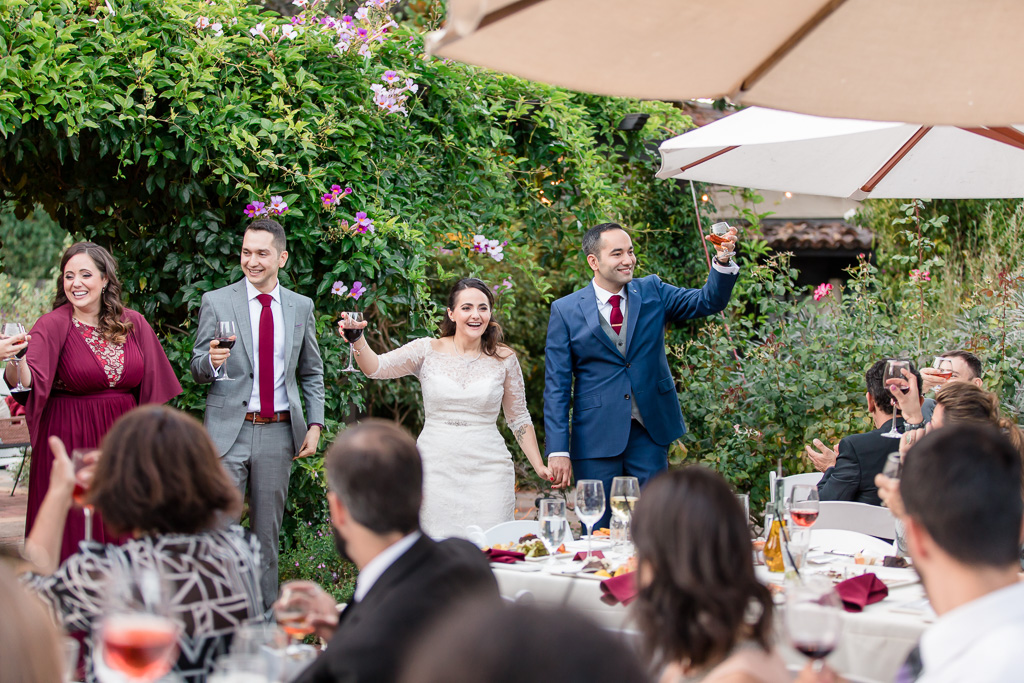 bride and groom toast with wedding guests