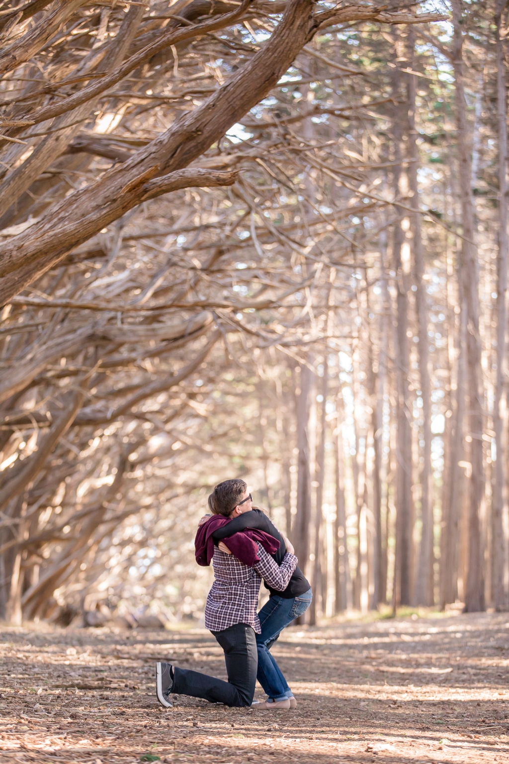 half moon bay cypress tree forest surprise engagement