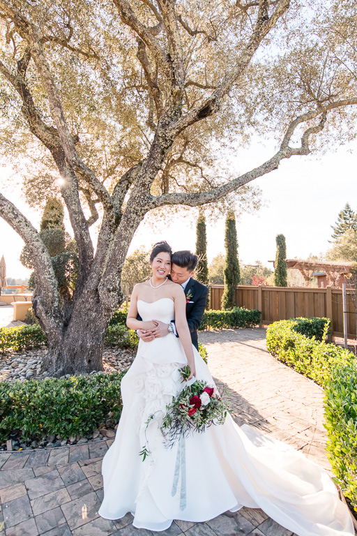 regale winery wedding portrait by the big olive tree