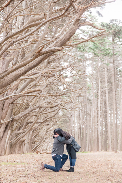 cypress tree tunnel surprise marriage proposal