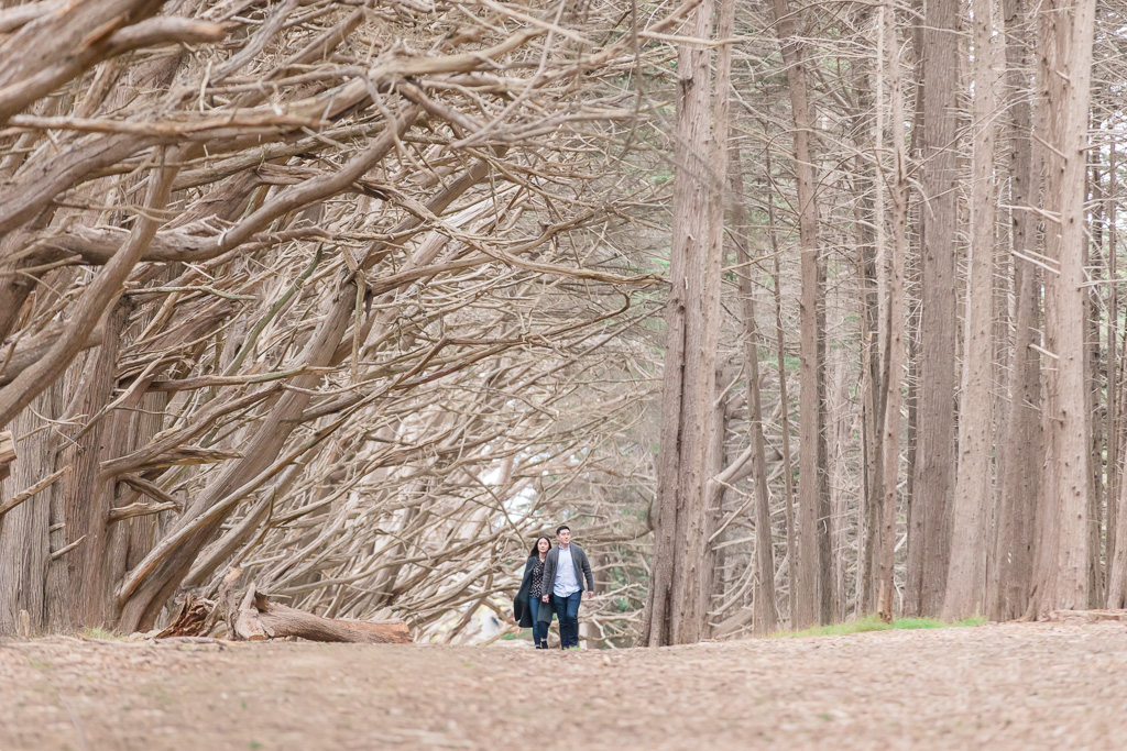 couple walking down the Fitzgerald forest and he is ready to propose