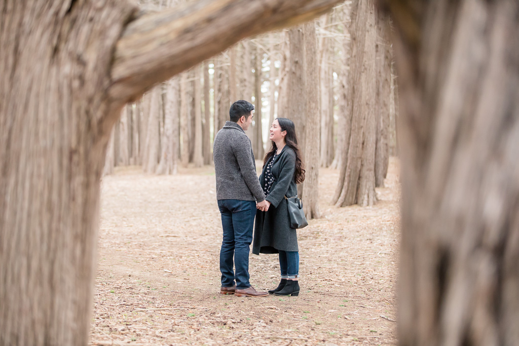 Bay area surprise proposal in the woods