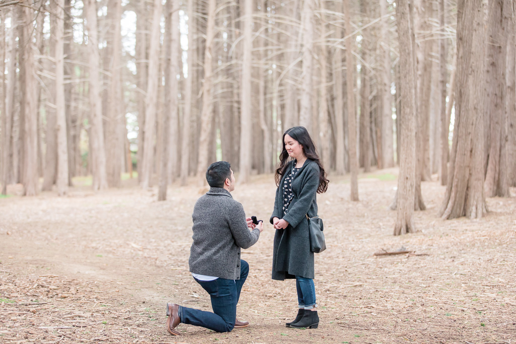 a surprise proposal in a whimsical forest