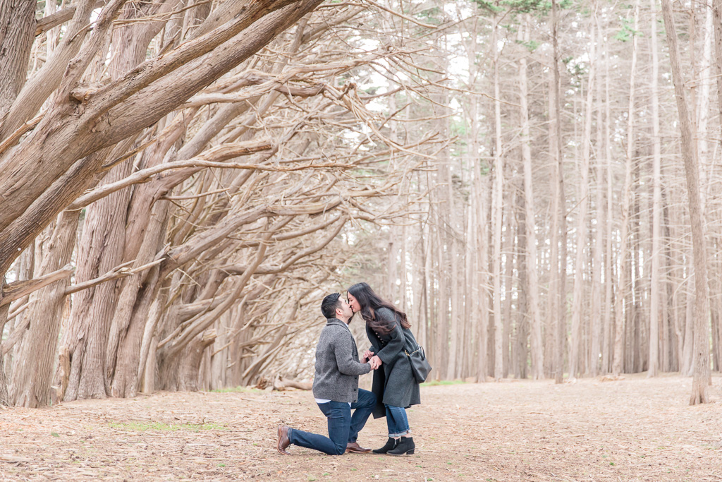 surprise engagement proposal in Half Moon Bay enchanted cypress tree forest