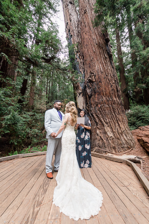 muir woods private wedding ceremony