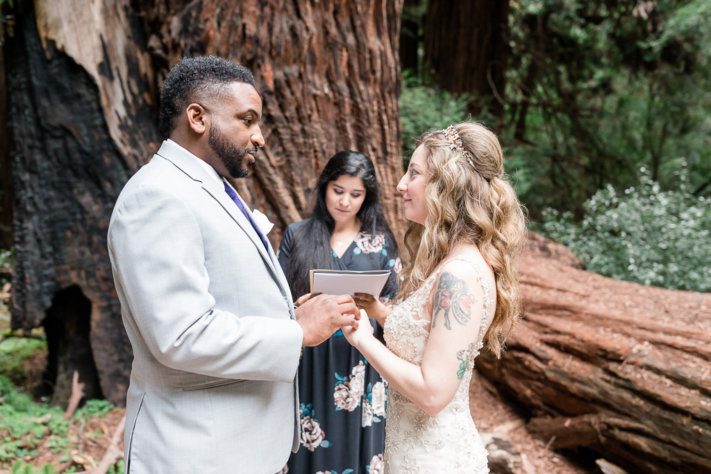 intimate wedding ceremony in the old redwoods