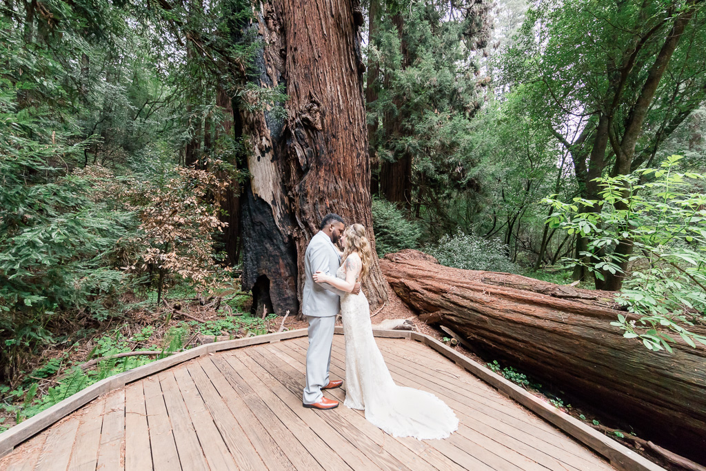 elopement in the California redwood forest