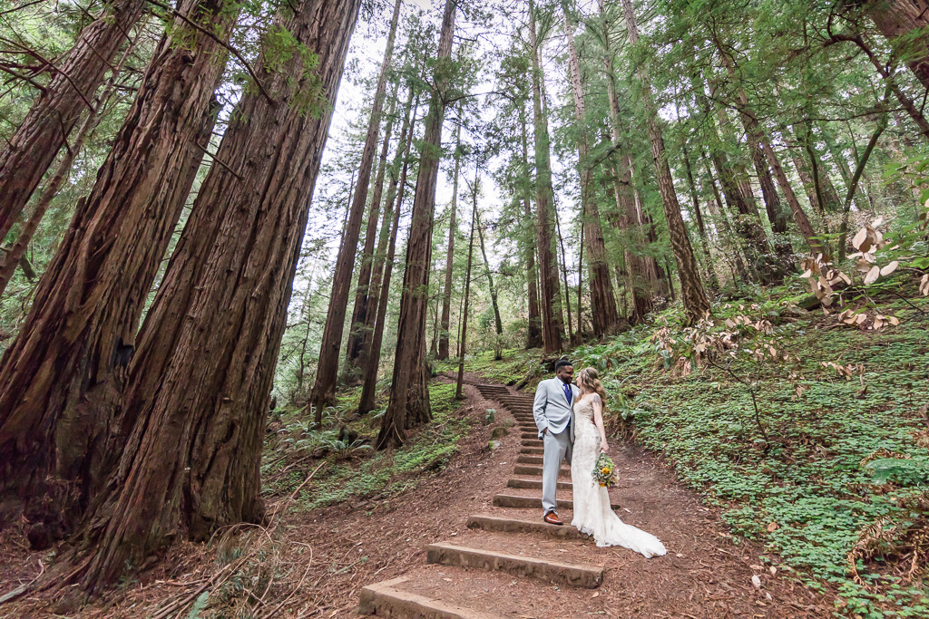 muir woods elopement portrait