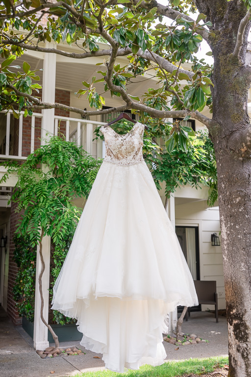 dress hanging in trees at Silverado Resort and Spa