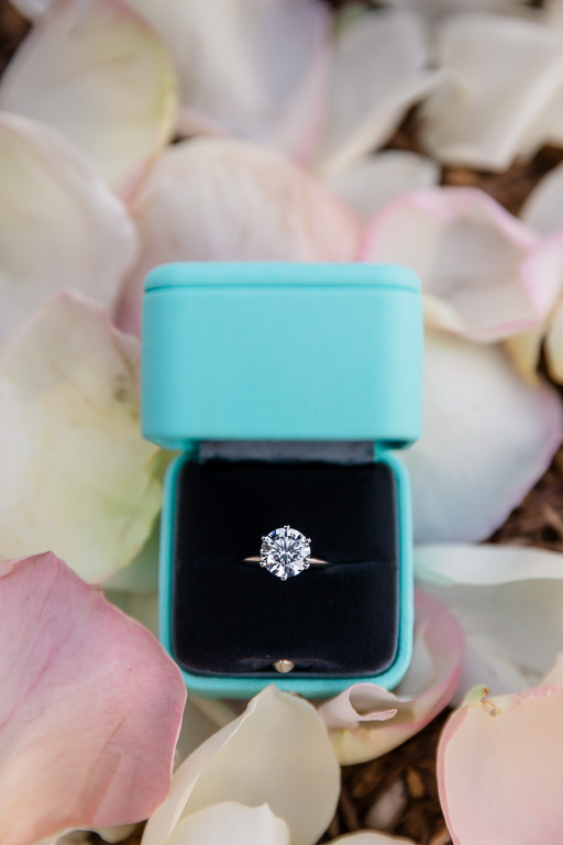 breathtaking tiffany diamond engagement ring for a surprise proposal
