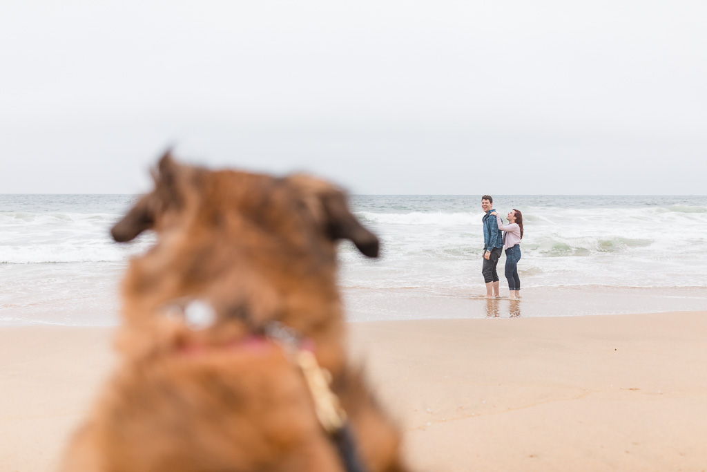 beach engagement photo with beloved dog