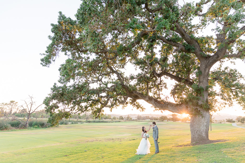 Fairview Napa wedding with the signature oak tree