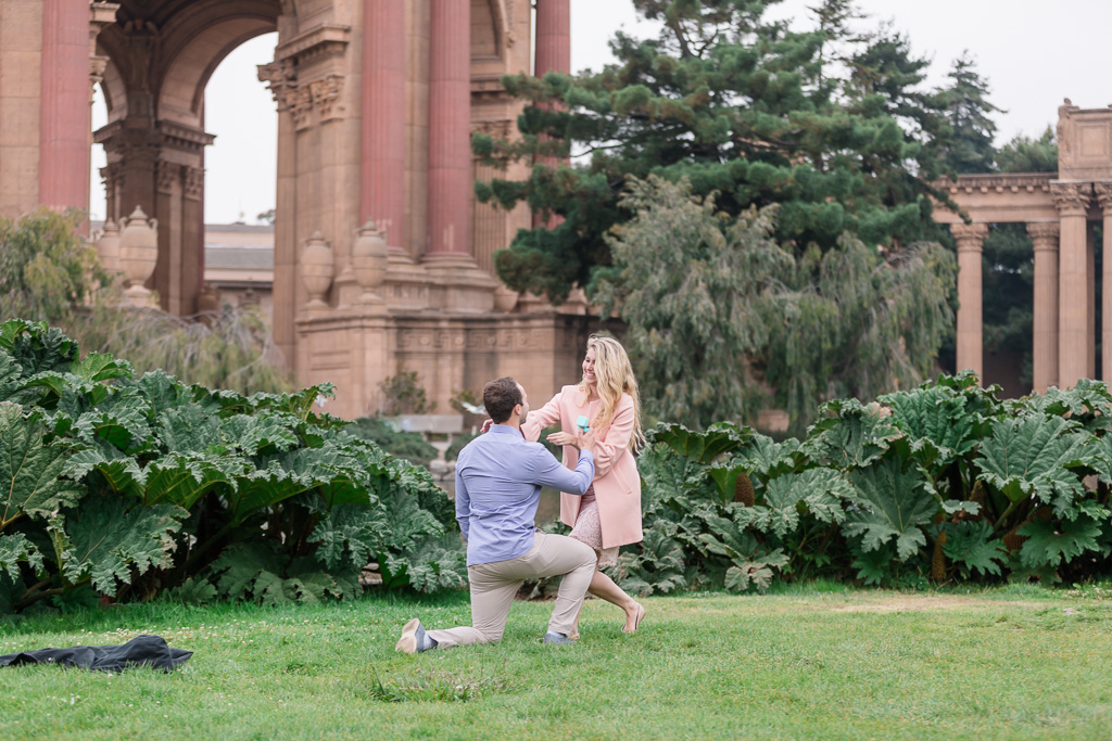 surprise marriage proposal at the palace of fine arts