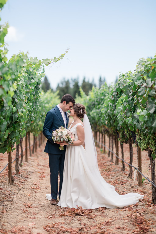 Sonoma Sebastopol wedding portrait in the vineyards