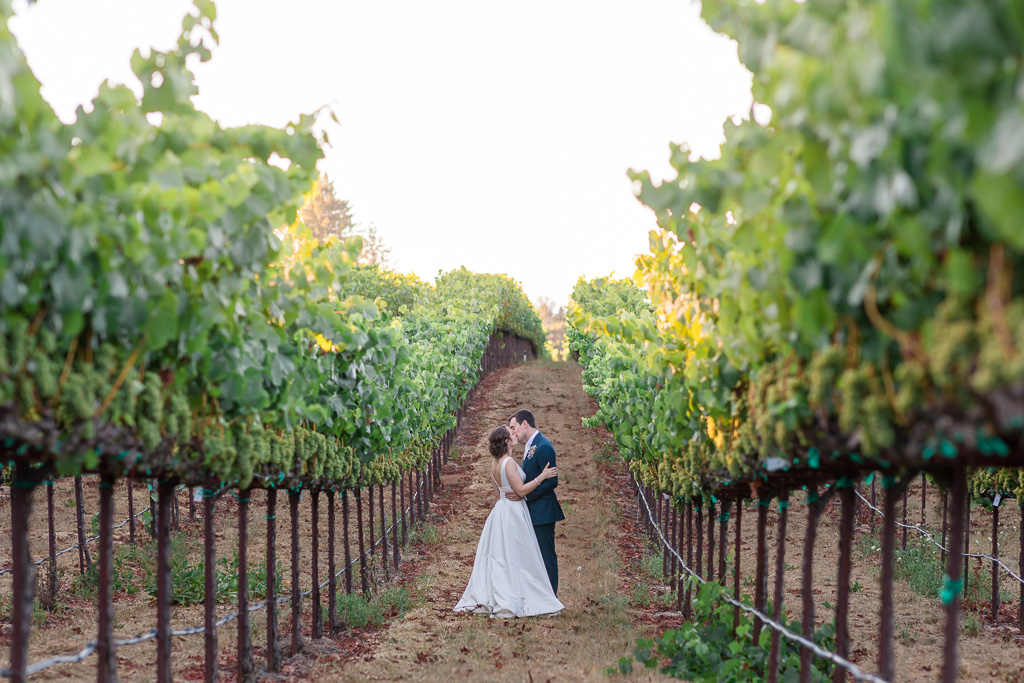 Sonoma wine country summer wedding