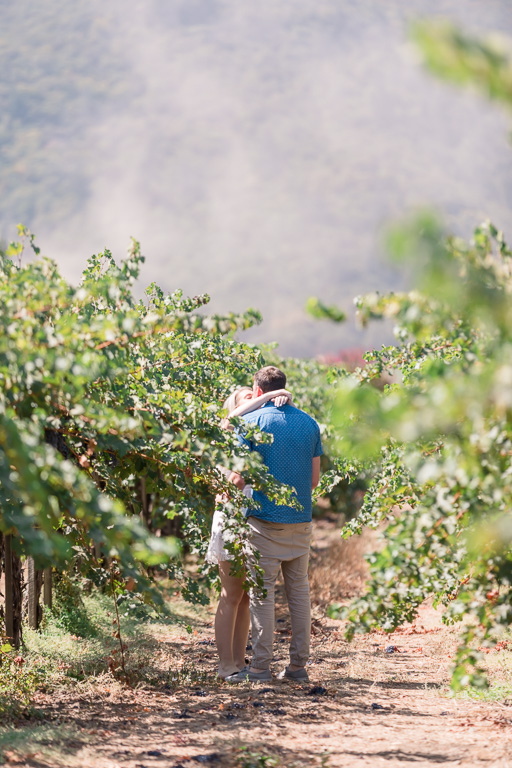 a kiss in the vineyards