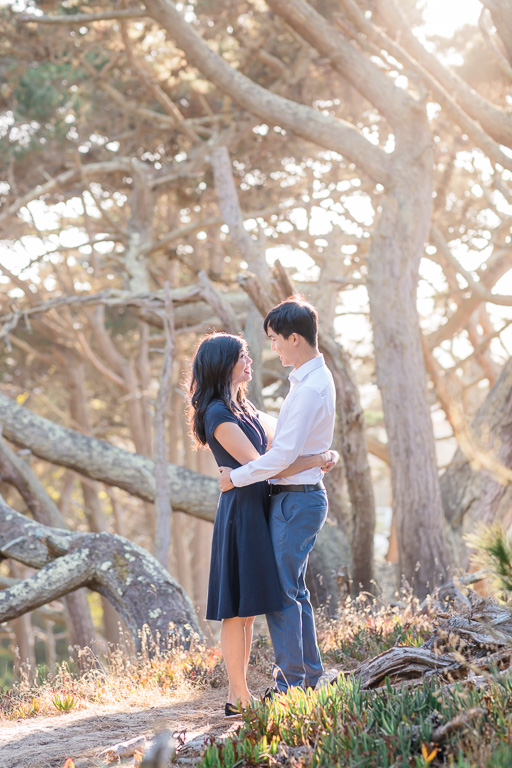SF engagement in cypress trees